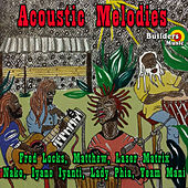 Acoustic Melodies by Various Artists