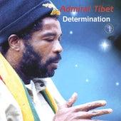 Determination by Admiral Tibett