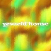 Yesacid House (Keyflow C-G-D-A-E-B-Gb-Db-Ab-Eb-Bb-F) de Various Artists