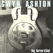 Beg, Borrow & Steel by Gwyn Ashton