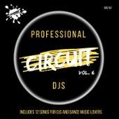 Professional Circuit Djs Compilation, Vol. 6 von Various Artists