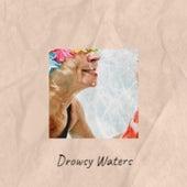 Drowsy Waters by Jimmy Work, Ernest Tubb, Gene Goforth, Marty Robbins, Eddy Arnold, Loretta Lynn, Hank Snow, Faron Young