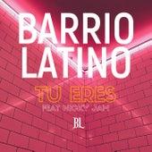 Tu Eres de Barrio Latino