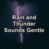 Rain and Thunder Sounds Gentle de Sounds Of Nature