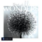 Small Wonders by Jonathan Elias