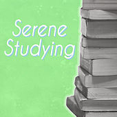 Serene Studying by Various Artists