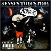Senses to Destroy by Senses to Destroy