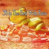36 In the Bed with Rain by Rain Sounds (2)