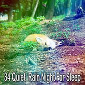 34 Quiet Rain Night for Sle - EP by Rain Sounds and White Noise
