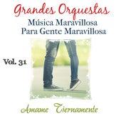 Grandes Orquestas Musica Maravillosa para Gente Maravillosa (Ámame Tiernamente) (Vol. 31) de German Garcia