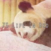 75 Life in Bed by Deep Sleep Music Academy