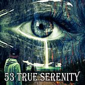 53 True Serenity by Meditation (1)