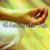 40 Ambience for Yoga di Deep Sleep Meditation