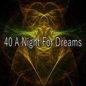 40 A Night for Dreams de Sleepicious