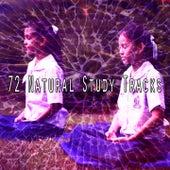 72 Natural Study Tracks van Meditation Spa