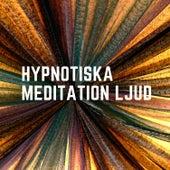 Hypnotiska meditation ljud von Blandade Artister