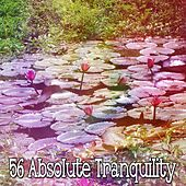56 Absolute Tranquility by White Noise Meditation (1)