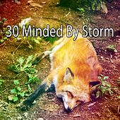 30 Minded by Storm by Rain Sounds Nature Collection