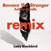 Beware The Stranger (Ashley Beedle Remix) by Lady BLACK BIRD