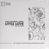 Little Love (pres. Lil' Love) (Alex Gaudino & Dyson Kellerman Discotronik 2020 Remix) von Alex Gaudino