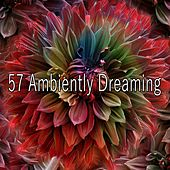 57 Ambiently Dreaming de Best Relaxing SPA Music