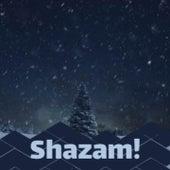 Shazam! de Tommy Regan, Jim Nabors, Jimmy Flynn, The Ames Brothers, The Lettermen, Jimmy Charles, The Beach Boys, George Formby, Mario Lanza, Johnny Maestro