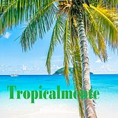 Tropicalmente de Fernando Villalona, Jossie Esteban y la patrulla 15, Los Toros Band, Sergio Vargas