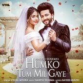 Humko Tum Mil Gaye de Naresh Sharma