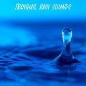 Tranquil Rain Sounds de Rain Sounds (2)