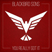 You Really Got It by Blackbird Sons