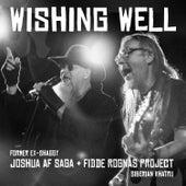 Wishing Well de Joshua af Saga