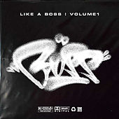 Like A Boss ! by Various Artists
