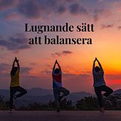 Lugnande sätt att balansera von Blandade Artister