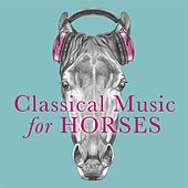 Classical Music for Horses de Various Artists