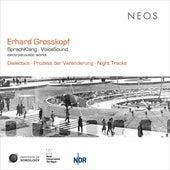 Erhard Grosskopf: SprachKlang fra Eberhard Blum