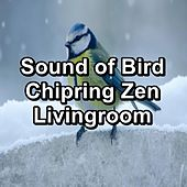 Sound of Bird Chipring Zen Livingroom by Spa Relax Music