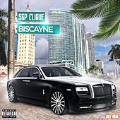 Biscayne by S