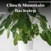 Clinch Mountain Backstep von Various Artists