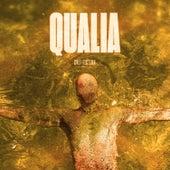 Cvlt Fiction by Qualia