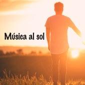 Música al sol de Various Artists
