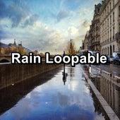 Rain Loopable de Sounds Of Nature