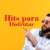 Hits para disfrutar by Various Artists