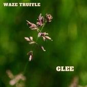 Glee de Waze Truffle