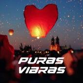 Puras Vibras de Various Artists