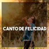 Canto de Felicidad de Various Artists