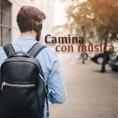 Camina con música de Various Artists