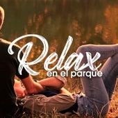 Relax en el parque de Various Artists