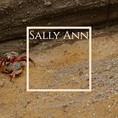Sally Ann von Various Artists