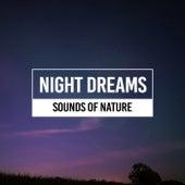 Dream Sounds de Sounds Of Nature