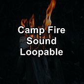 Camp Fire Sound Loopable by S.P.A